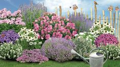 Schneewittchen Snow White fragrance collection: This noble collection seems to float in the garden l Different Plants, Types Of Plants, Comment Planter Des Roses, Rosen Beet, Flower Drawing Images, Hosta Gardens, Hydrangea Care, Rose Trees, Planting Roses
