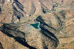 Foto tomada durante un vuelo comercial. Embalse y olivares. España. Foto de #ignacioklindworth 2006