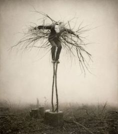 by Robert and Shana Parke Harrison : photographers