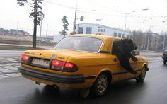 y  tuvo  que  alquilar  un  taxi  para  volver....  oky