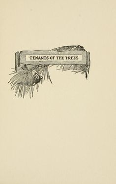 Tenants of the trees / - Biodiversity Heritage Library