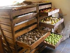 Root cellar storage/ what to do AFTER harvest. Great idea for bulk storage, to. Root cellar storage/ what to do AFTER harvest. Great idea for bulk storage, too. I wish I had room for this! Basement Storage, Pantry Storage, Diy Storage, Storage Ideas, Storage Solutions, Smart Storage, Storage Boxes, Storage Shelves, Kitchen Storage