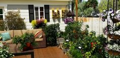 Grow a Container Vegetable Garden on Your Patio: Tips | The Foodie Gardener™  Extended information, video and photos!