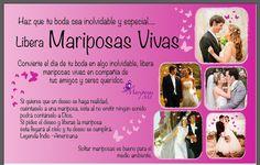 EDITORIAL**  Flyer Liberación de mariposas vivas en eventos especiales / ML Mariposas   Diseño: M. Fernanda Gómez J.
