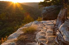 3. Buck's Pocket State Park - Grove Oak