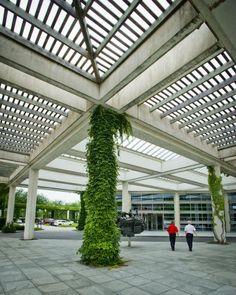 Cummins Inc. Corporate Office Landscaping | Designed by Landscape Architect Jack Curtis