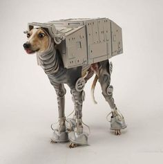 bones cachorro cosplay fantasia star wars at-at