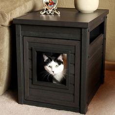 I was talking about taking a used piece of furniture and retrofitting it like this.   New Age Pet Litter Loo Litter Box Enclosure