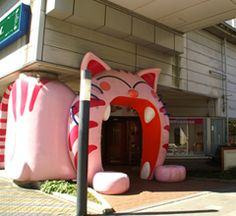 Japan's largest cat cafe! Nyanda cafe :D #AMERICANAPPAREL #PINATRIPWITHAA