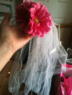 DIY Bachelorette Party Sash Veil