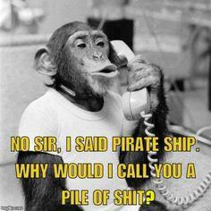 Work Sarcasm, Sarcasm Meme, Work Humor, Thursday Humor, Monday Humor, Life Humor, Humor Humour, Funny Humor, Humour Quotes