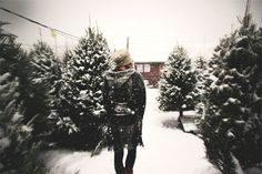 Post image for December Do: Go To A Christmas Tree Farm