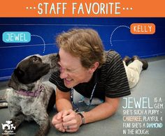 Kelly, Austin Humane Society Public Relations Manager, loves Jewel because of her gentle and silly spirit!
