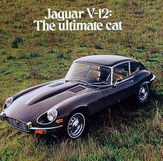 Jaguar V-12 ad