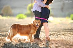 I am in LOVE with this Engagement photo for the Save The Date! #dogs #savethedate #Love #Engagementphotos #Weddingideas #wedding #goldenretriever #Savethedateideas