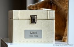 A post of great sensitivity and affection, // GLOGIRLY: Remembering Nicki, the Cat Who Came Before Us, With a Special Giveaway from A Pet's Life