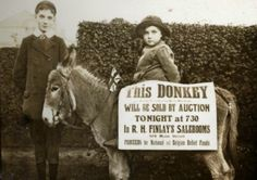 A donkey auction in November, in Bangor, Co Down, in aid of the Belgium Relief Fund. Donkeys were auctioned off in Ireland as part o. Old Irish, Public Records, Sweet Soul, First World, Auction, Lettering, Donkeys, Bangor, Raise Funds