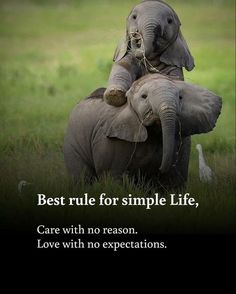 Best rule for simple life. Care with no reason, love with no expectations.
