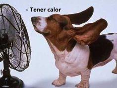 ▶ El Verbo Tener - YouTube