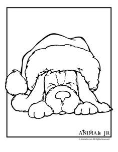 Christmas Printables: Puppy Coloring Pages Christmas Puppy Coloring Page 1 – Animal Jr.