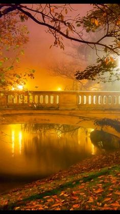 Autumn mist | via #GuessQuest