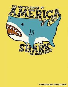 NOW WE SEE! #sharkweek