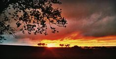 Feliz atardecer, amig@s!   La belleza de los atardeceres cacereños.... #Extremadura