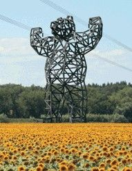 Bear Electricity Pylon