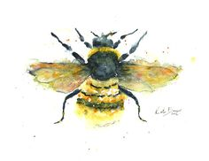 Bumble Bee Print of watercolor illustration by MilkandHoneybread