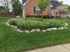 Native Plants, Perennials, Stepping Stones, Beds, Landscape, Outdoor Decor, Home Decor, Stair Risers, Scenery