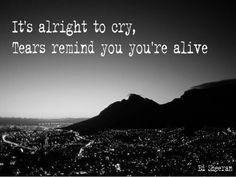 Tears are words unspoken