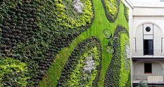 This vertical garden is pretty big, measuring in at a total of 180 square meters (1937 square feet). Have a look on the bike! - LOL --- by ISABEL LA CATÓLICA by Verde Vertical