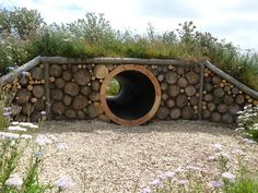 Wildflower covered mound and tunnel looking great