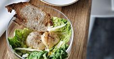 Cæsarsalat med ovngrillede kammuslinger - BO BEDRE