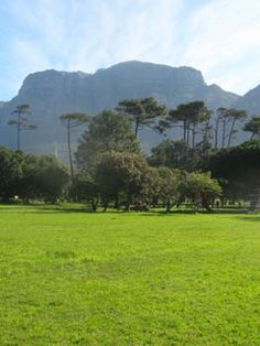 Welcome to the Keurboom Park Association Most Beautiful Cities, Cape Town, Welcome, Homeschooling, Golf Courses, Sunshine, Activities, Park, City