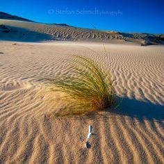 Zahara de los Atunes son playas doradas, gente curtida en la almadraba, amabilidad, atardeceres de ensueño y descanso del estrés.