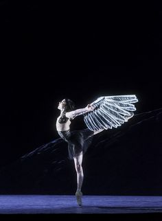 Sarah Lamb as Raven Girl in Raven Girl © ROH / Johan Persson 2013 by Royal Opera House Covent Garden, via Flickr
