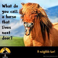 Funny animals for kids hilarious fun 35 Ideas for 2019 Farm Jokes, Funny Work Jokes, Cute Jokes, Corny Jokes, Funny Jokes For Kids, Funny Puns, Work Humor, Hilarious, Kid Jokes