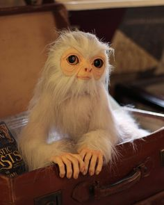 Cute Fantasy Creatures, Alien Creatures, Magical Creatures, Mystical Animals, Beast Creature, Fantastic Beasts And Where, Cute Characters, Art Dolls, Baby Animals
