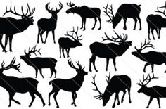 Royalty free silhouette vector images, silhouette graphics, clipart, illustrations and high resolution stock images. Find the silhouette vectors you want! Silhouette Clip Art, Animal Silhouette, Elk Tattoo, Scroll Saw Patterns, Wildlife Art, Pyrography, Vector Art, Vector Stock, New Art