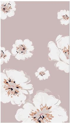 Flower Background Wallpaper, Flower Phone Wallpaper, Cute Wallpaper Backgrounds, Cellphone Wallpaper, Flower Backgrounds, Simple Iphone Wallpaper, Minimalist Wallpaper, Simple Wallpapers, Pretty Wallpapers