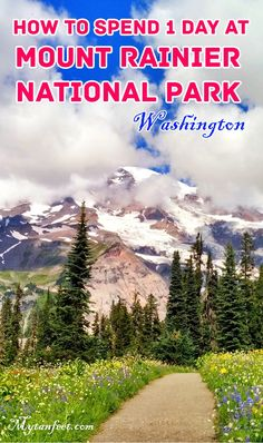 How to spend one day at Mount Rainier National Park in Washington http://mytanfeet.com/pacific-northwest/mount-rainier-tours-northwest/