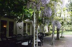 Wisteria draped pergola, Lakewold Gardens, Lakewood, WA