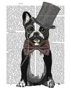 Monsieur Bulldog, French Bulldog Digital Painting