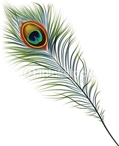 Shop JP London Simple Peacock Feather uStrip Peel and Stick Removable Wall Mural at Lowe's Canada. Find our selection of wall decals at the lowest price guaranteed with price match + off. Peacock Feather Tattoo, Feather Drawing, Feather Vector, Feather Painting, Feather Art, Feather Tattoos, Fabric Painting, Peacock Feathers Drawing, Peacock Vector