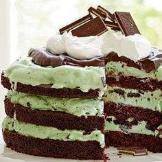 There is nothing better than mint chocolate chip ice cream. Other than a mint chocolate chip ice cream cake. Food Cakes, Cupcake Cakes, Cupcakes, Mini Cakes, Chocolate Ice Cream Cake, Mint Chocolate Chips, Chocolate Mints, Chocolate Ganache, Chocolate Desserts