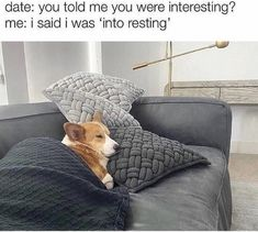 Sunday Feels, Introvert Problems, Sarcasm Only, Morning Humor, Dog Memes, Funny Relatable Memes, Funny Quotes, Merino Wool Blanket, Really Funny