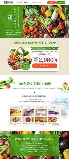 Food Web Design, Site Design, Web Japan, Beautiful Web Design, Modern Color Schemes, Online Coloring, Landing Page Design, Web Layout, Graphic Design Projects