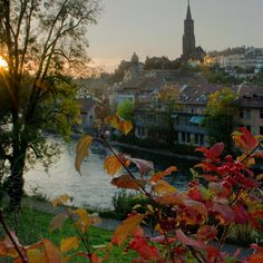 l'automne Berne, Swiss Travel, Switzerland, The Neighbourhood, Painting, Carnival, Autumn, Painting Art, Paintings