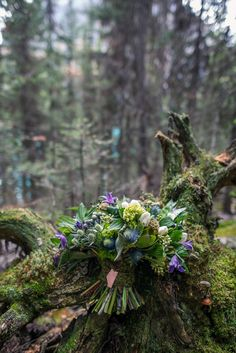 A rustic Canadiana forest inspired wedding bouquet with green succulents, purple and blue flowers, tied with moss and an Alberta pendant. Bouquet by Christopher Cory. Photo by one-edition.ca